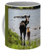 A Mom And Her Baby Coffee Mug