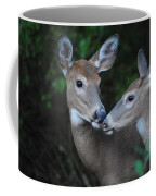 A Moms Touch Coffee Mug