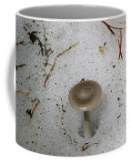 A Mushroom In Snow  Coffee Mug
