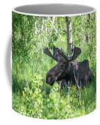 A Nap In The Grass Coffee Mug
