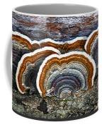 A Natural Landscape Coffee Mug
