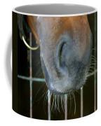 a Nose Knows Coffee Mug