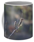 A Pair Of Cedar Waxwings Enjoying Lunch Coffee Mug