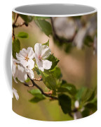 A Panoramic View Of A Cherry Tree Coffee Mug