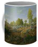 A Path Among The Rocks Coffee Mug