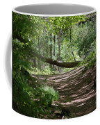 A Path In The Woods Coffee Mug