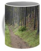 A Path In The Woods Coffee Mug