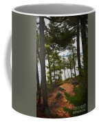 A Path To The Point Coffee Mug