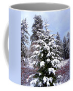 A Peaceful Winter Day Coffee Mug