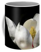 A Peek Inside A Magnolia Coffee Mug