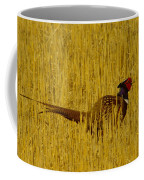 A Pheasant Looking For A Mate Coffee Mug