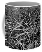 A Pineapple Field Near Nassau, Bahamas, 1883 Coffee Mug