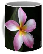A Pink Plumeria Coffee Mug