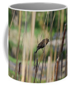 A Plumage Sparrow Coffee Mug