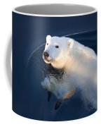 A Polar Bear Glance Coffee Mug