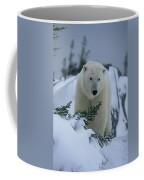 A Polar Bear In A Snowy, Twilit Coffee Mug by Norbert Rosing