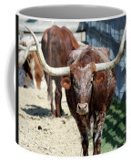 A Portrait Of A Texas Longhorn Steer Coffee Mug