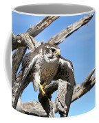 A Prairie Falcon Against A Blue Sky Coffee Mug