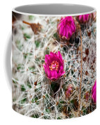 A Prickly Bed Coffee Mug