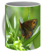 A Red Butterfly Perching  Coffee Mug