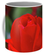 A Red Rose Unfolding  Coffee Mug