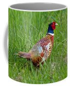A Ring-necked Pheasant Walking In Tall Grass Coffee Mug