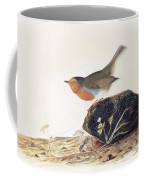A Robin Perched On A Mossy Stone Coffee Mug