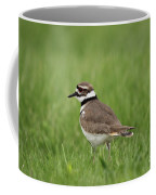 A Run Through The Grass Coffee Mug