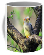 A Shady Woodland Bird Red-bellied Woodpecker Coffee Mug