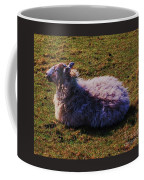 A Sheep In Wales Coffee Mug