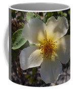 A Simple Rose Coffee Mug