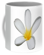 A Single Plumeria Flower Isolated Coffee Mug