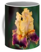 A Single Tear Coffee Mug