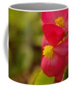 A Soft Red Flower Coffee Mug