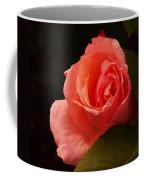 A Soft Rose  Coffee Mug
