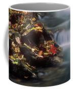 A Special Place Coffee Mug