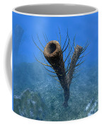 A Species Of Pirania, A Primitive Coffee Mug