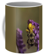A Spider Eats A Bumblebee While Perched Coffee Mug