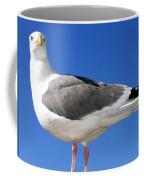 A Splendid Seagull Coffee Mug