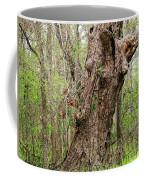 A Spring Beauty Coffee Mug