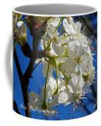 A Spring Delight Coffee Mug
