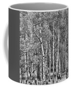 A Stand Of Aspen Trees In Black And White Coffee Mug