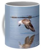 A Startled Sanderling By Darrell Hutto Coffee Mug