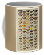 A Study Of Moths Characteristic Of Indo Coffee Mug