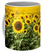 A Sunflower Plantation In Summer In South Dakota Coffee Mug