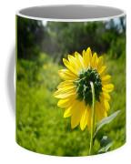 A Sunflower's Backside Coffee Mug
