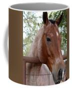 A Sweet Face Coffee Mug