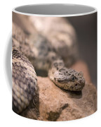 A Tiger Rattlesnake At The Henry Doorly Coffee Mug