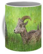 A Time To Rest Coffee Mug
