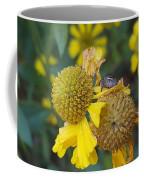 A Tiny Peek Coffee Mug